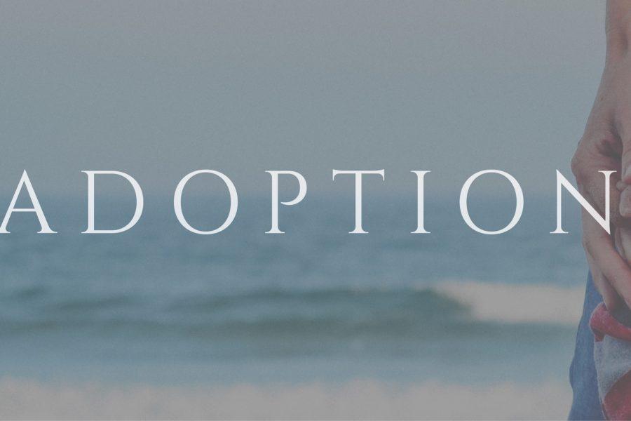 #45 Adoption