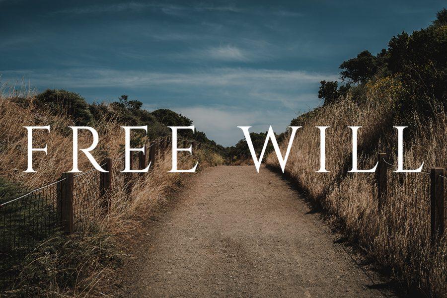 #42 Free Will